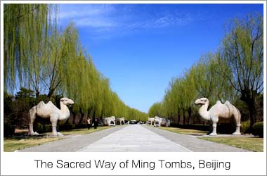 Sacred Way of Ming Tombs